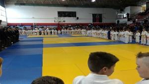 judo-panionios