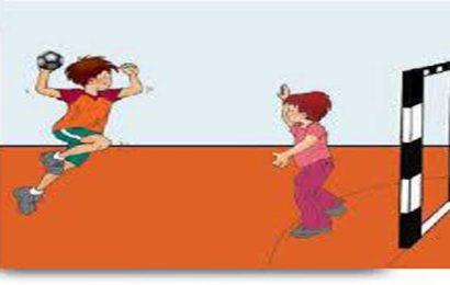 1o Πρωτάθλημα χειροσφαίρισης Δημοτικών Σχολείων