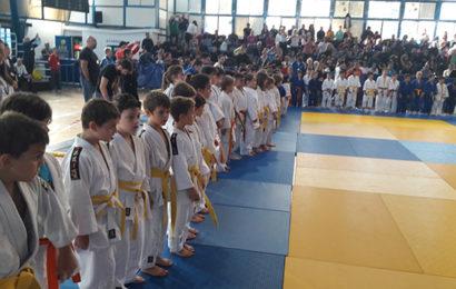 Με απόλυτη επιτυχία το 6ο Panionios Cup στο Τζούντο (Vid) (Pics)